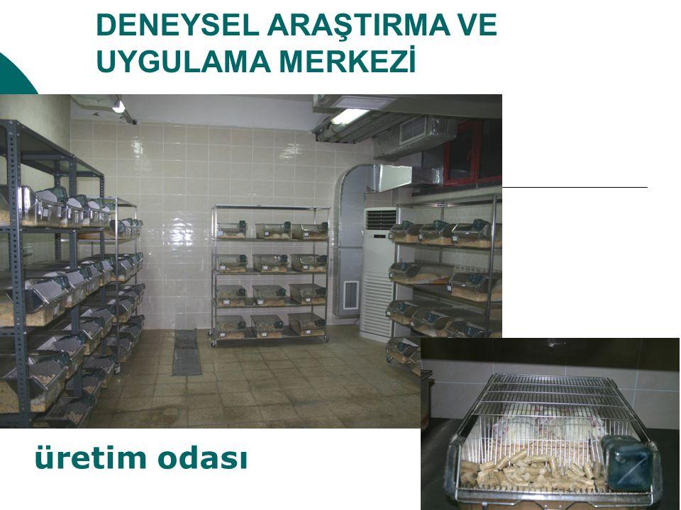 DENEYSEL ARAŞTIRMA VE UYGULAMA MERKEZİ üretim odası
