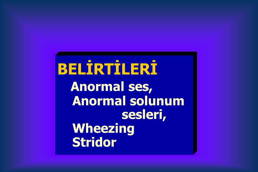 BELİRTİLERİ Anormal ses, Anormal solunum sesleri, Wheezing Stridor