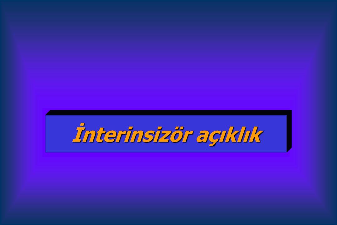 İnterinsizör açıklık