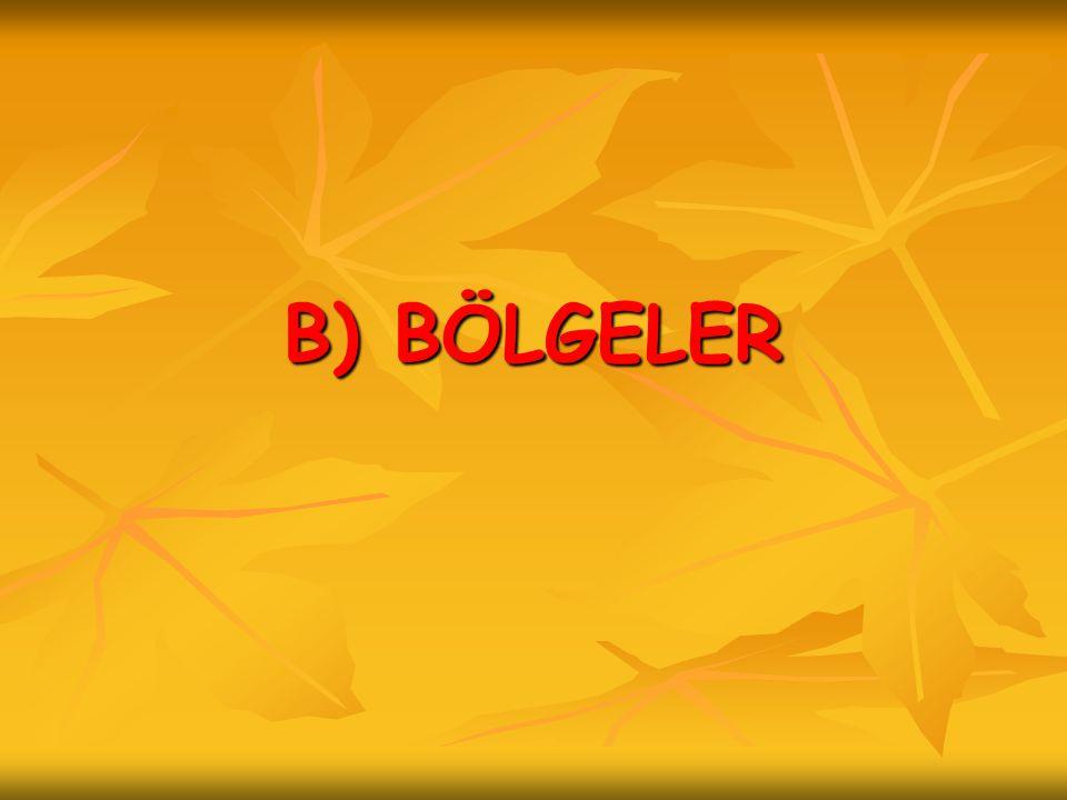 B) BÖLGELER