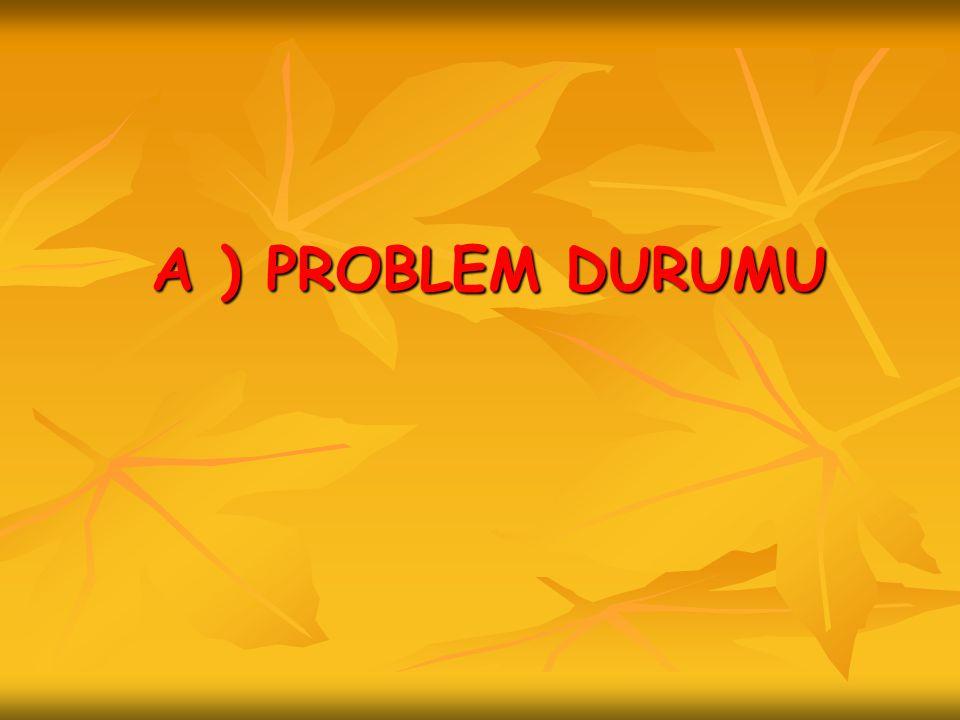A ) PROBLEM DURUMU