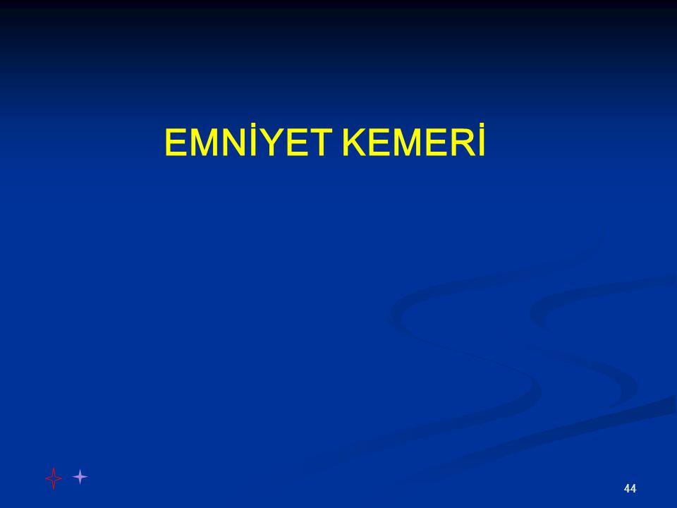 44 EMNİYET KEMERİ