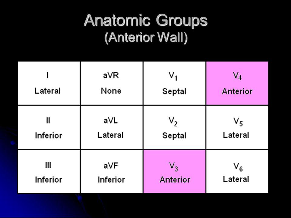 Anatomic Groups (Anterior Wall)