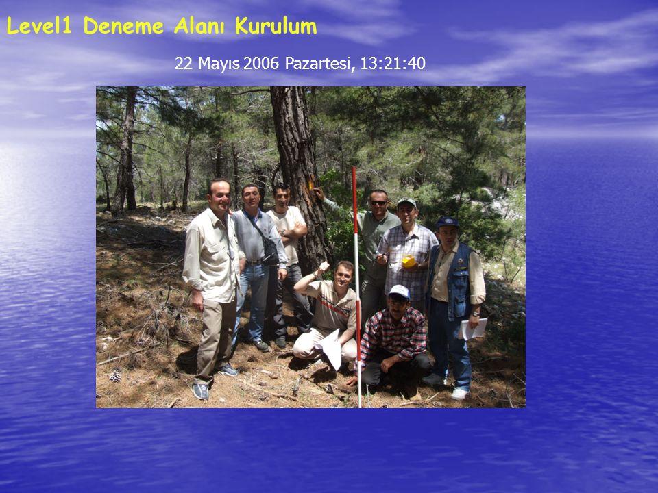 22 Mayıs 2006 Pazartesi, 13:21:40 Level1 Deneme Alanı Kurulum