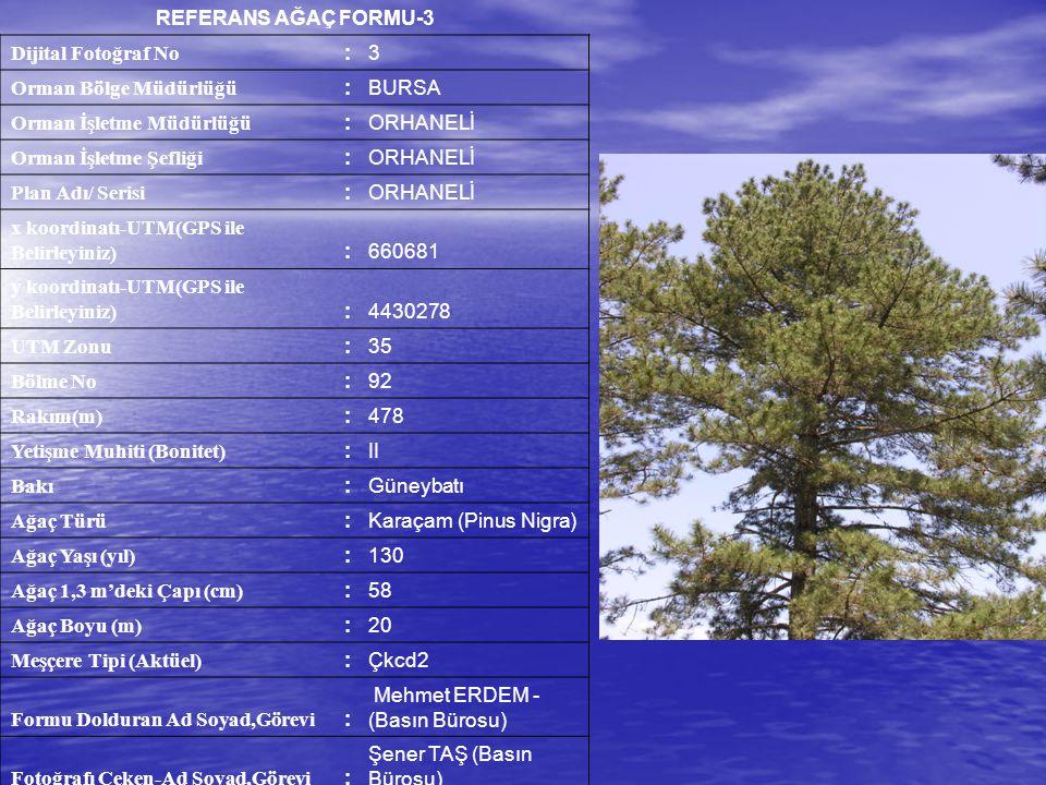 REFERANS AĞAÇ FORMU-3 Dijital Fotoğraf No :3 Orman Bölge Müdürlüğü :BURSA Orman İşletme Müdürlüğü :ORHANELİ Orman İşletme Şefliği :ORHANELİ Plan Adı/