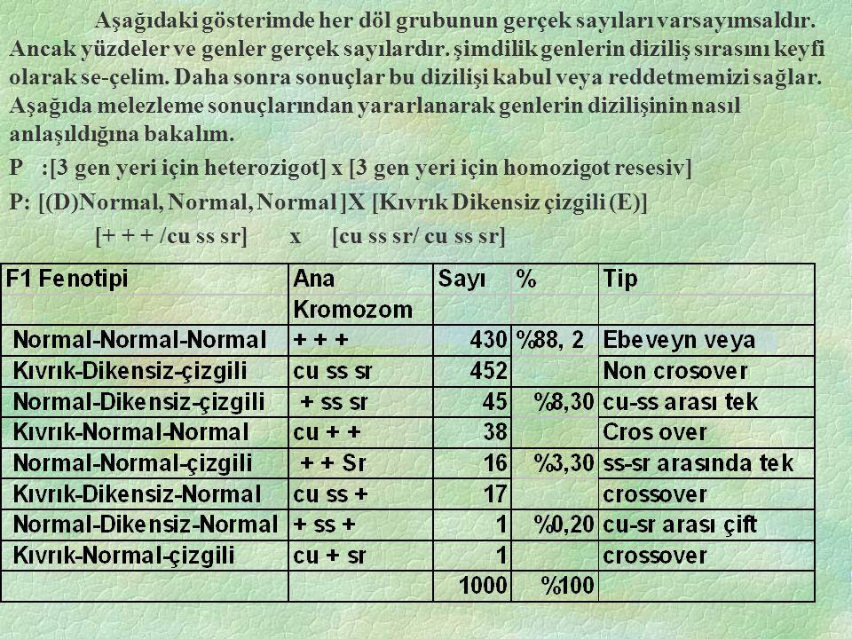 Aşağıdaki gösterimde her döl grubunun gerçek sayıları varsayımsaldır.