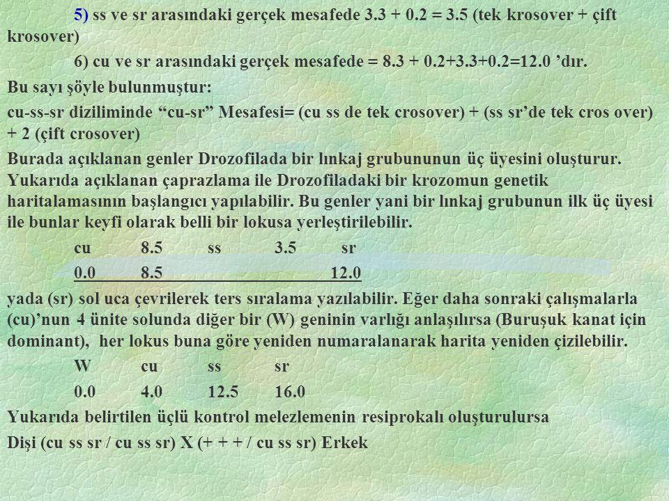 5) ss ve sr arasındaki gerçek mesafede 3.3 + 0.2 = 3.5 (tek krosover + çift krosover) 6) cu ve sr arasındaki gerçek mesafede = 8.3 + 0.2+3.3+0.2=12.0 'dır.