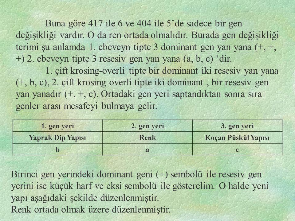 Buna göre 417 ile 6 ve 404 ile 5'de sadece bir gen değişikliği vardır.