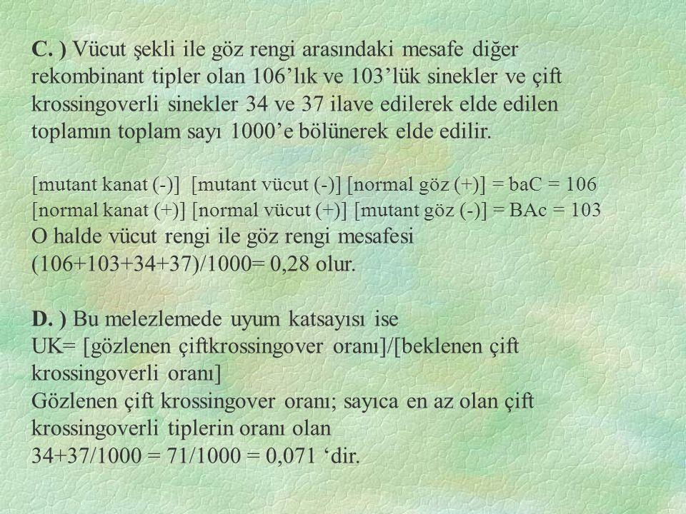 C. ) Vücut şekli ile göz rengi arasındaki mesafe diğer rekombinant tipler olan 106'lık ve 103'lük sinekler ve çift krossingoverli sinekler 34 ve 37 il