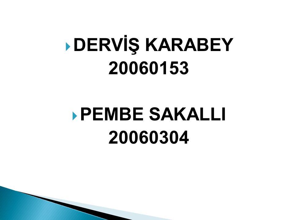  DERVİŞ KARABEY 20060153  PEMBE SAKALLI 20060304