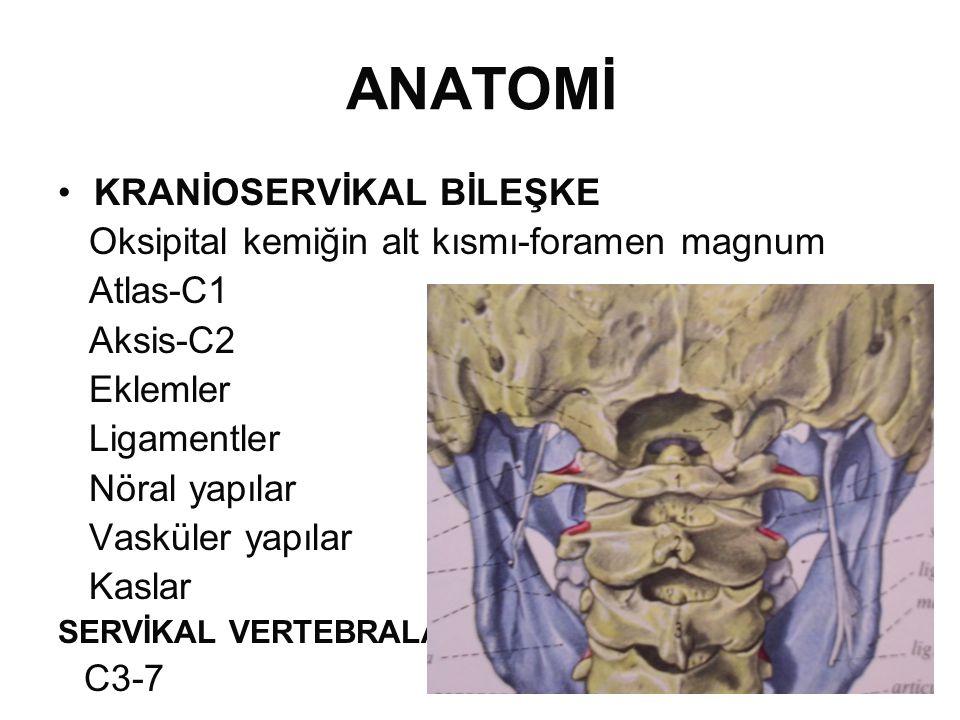 ANATOMİ •KRANİOSERVİKAL BİLEŞKE Oksipital kemiğin alt kısmı-foramen magnum Atlas-C1 Aksis-C2 Eklemler Ligamentler Nöral yapılar Vasküler yapılar Kaslar SERVİKAL VERTEBRALAR C3-7
