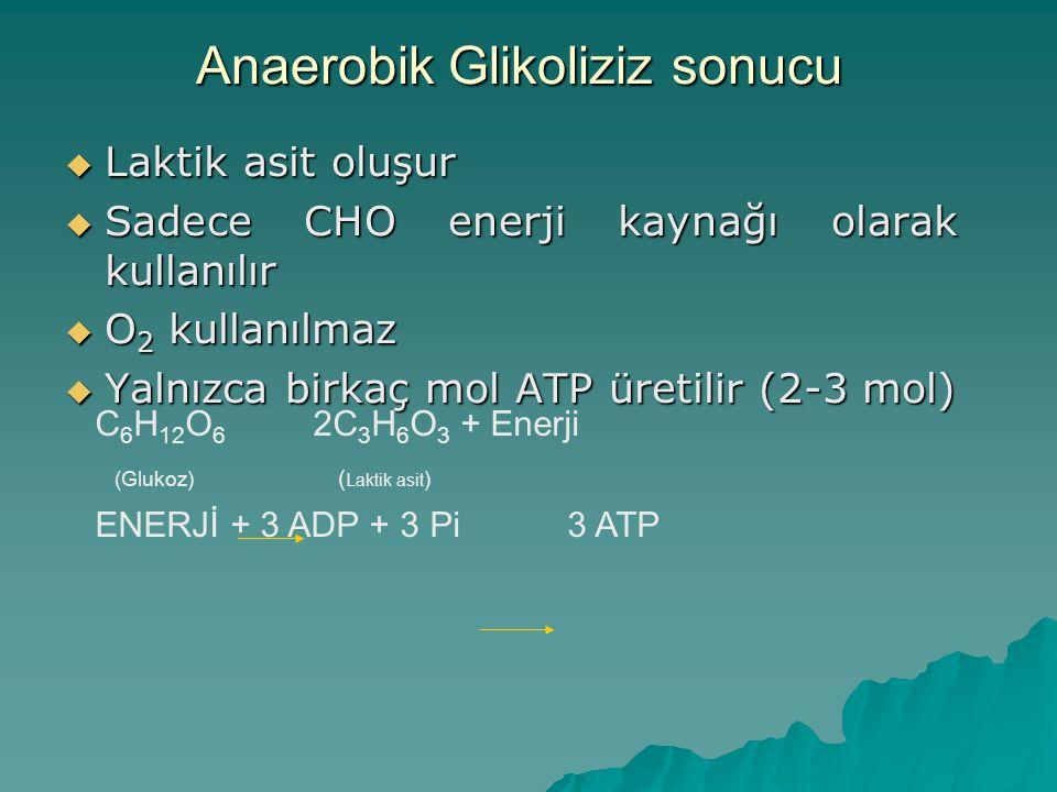 Kas Glikojeni Glukoz Kan Glukozu Glikolitik Reaksiyonlar ADP+Pi Zinciri ATP Pirüvik Asit Laktik Asit Anaerobik glikoliz: Glikojen kimyasal bir seri reaksiyon sonucunda laktik asite parçalanır.