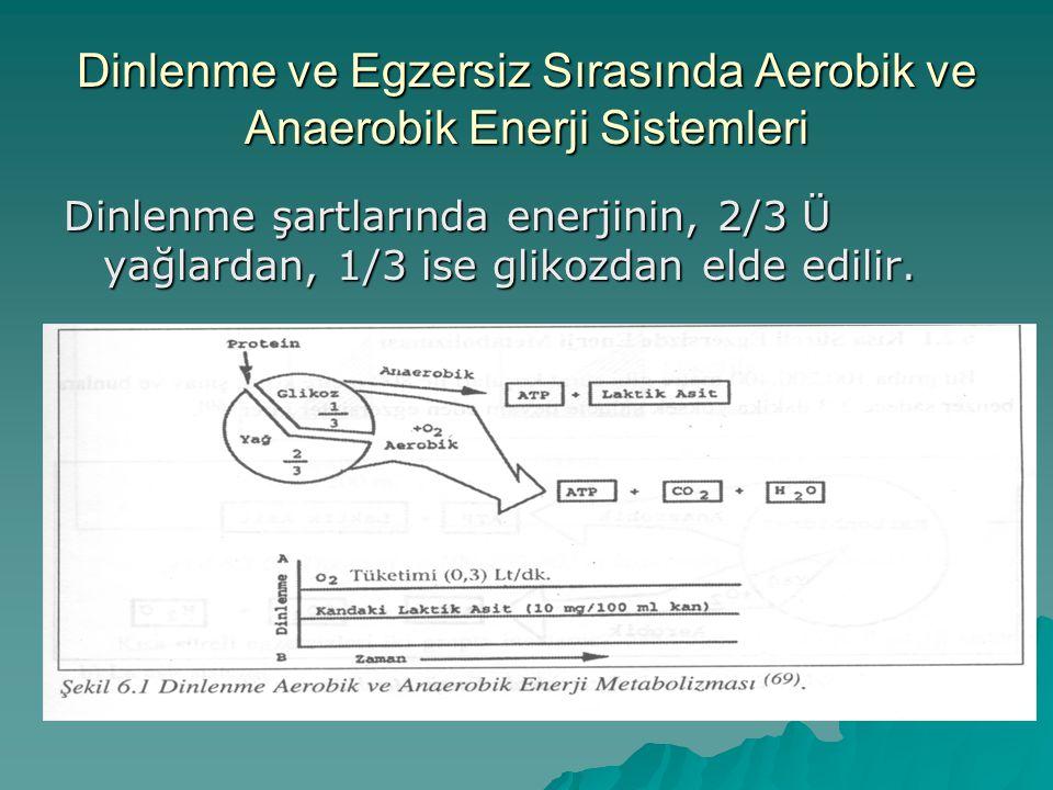Enerji Sistemi ATP-CP (Fosfojen) Sistemi Laktik Asit (Anaerobik Glikoliz) Sistemi Oksijen (Aerobik) Sistemi Oksijen gereksinimi AnaerobikAnaerobikAerobik ATP üretim hızı Çok hızlı HızlıYavaş Enerji Üretimi Kaynağı Depolanmış ATP ve CP Karbonhidrat (glikojen veya glukoz) Karbonhidrat (glikojen ve glukoz) ve yağlar (trigliseritler) ATP üretme kapasitesi Çok sınırlı SınırlıSınırsız Kullanıldığı egzersiz türleri Çok şiddetli, kısa süreli ve patlayıcı kuvvet gerektiren hareketler (örneğin; sürat koşuları, atlamalar ve atmalar) 1-3 dakika kadar süren şiddetli aktiviteler Dayanıklılık gerektiren egzersizler Diğer özellikler Kaslarda depolanmış olan ATP ve CP kaynakları çok sınırlıdır ve bu nedenle çok kısa süreli enerji sağlayabilir.
