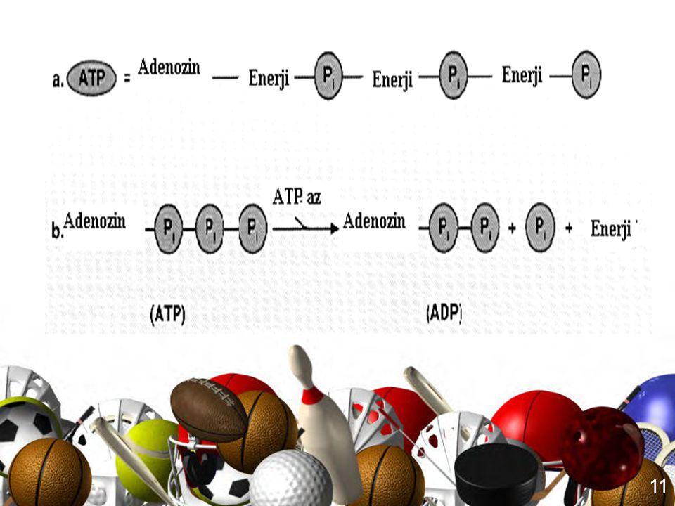 10 ATP, adenozin adı verilen kompleks bir elemandan ve bu maddeye bağlı üç fosfat grubundan oluşur. Enerji ise, bu fosfat gruplarını birbirine bağlaya