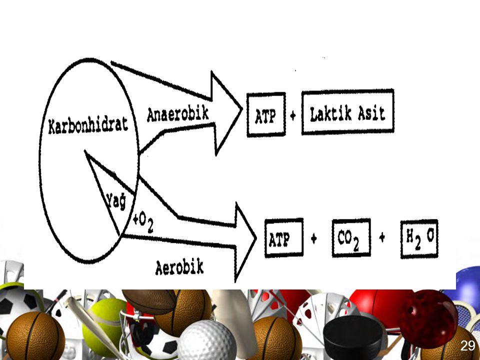 28 Kısa süreli Egzersizde Enerji Metabolizması •Aerobik yolla, egzersiz sırasında yeterli miktarda ATP sağlayamamasının nedenleri; 1.Herkesin aerobik