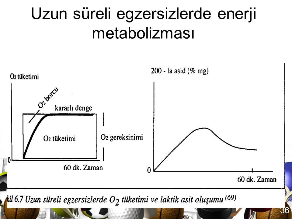 35 Uzun süreli egzersizlerde enerji metabolizması