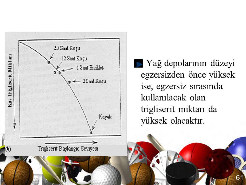 60 Kas Trigliserit Depoları •Kas TG tüketiminin egzersizin süresi ile ilişkisi yoktur. •Trigliserit kullanımını etkileyen faktörlerden biri egzersizde