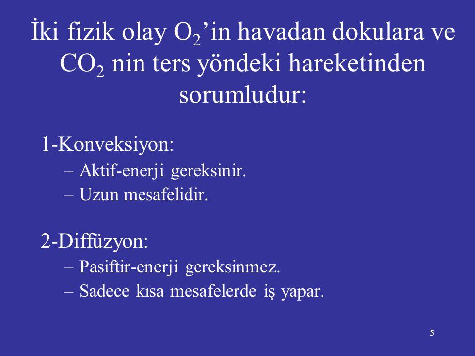 5 İki fizik olay O 2 'in havadan dokulara ve CO 2 nin ters yöndeki hareketinden sorumludur: 1-Konveksiyon: –Aktif-enerji gereksinir. –Uzun mesafelidir