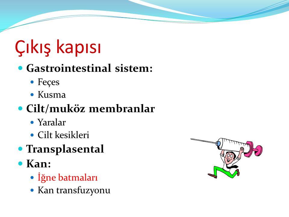 Çıkış kapısı  Gastrointestinal sistem:  Feçes  Kusma  Cilt/muköz membranlar  Yaralar  Cilt kesikleri  Transplasental  Kan:  İğne batmaları 