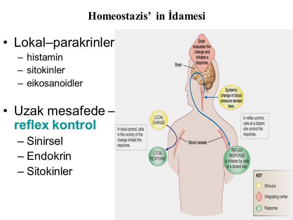 Homeostazis' in İdamesi •Lokal–parakrinler –histamin –sitokinler –eikosanoidler •Uzak mesafede – reflex kontrol –Sinirsel –Endokrin –Sitokinler