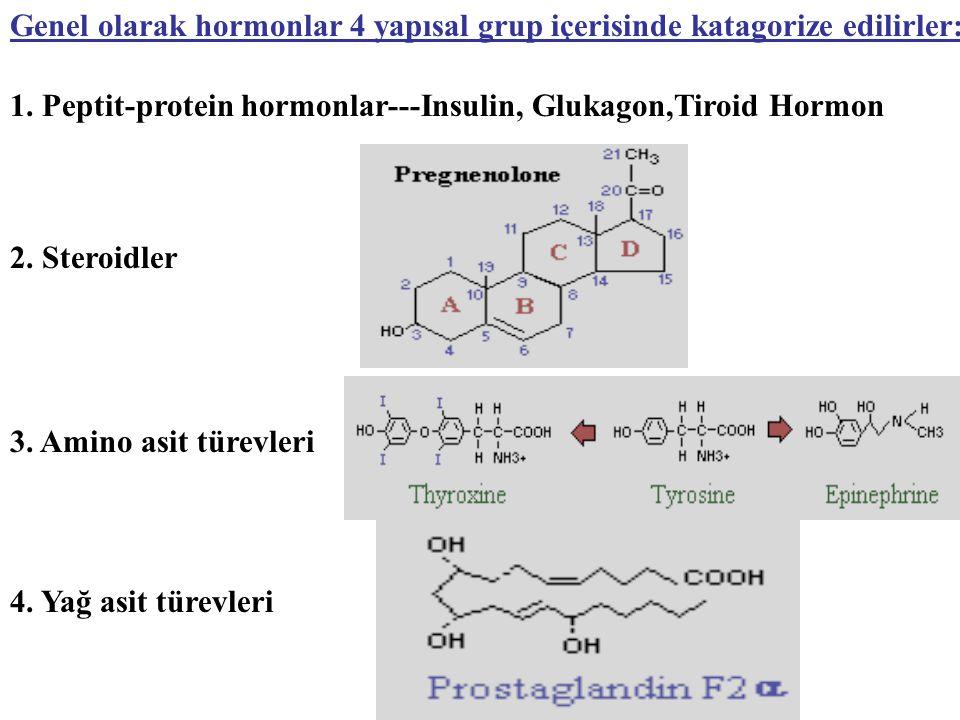 Genel olarak hormonlar 4 yapısal grup içerisinde katagorize edilirler: 1. Peptit-protein hormonlar---Insulin, Glukagon,Tiroid Hormon 2. Steroidler 3.