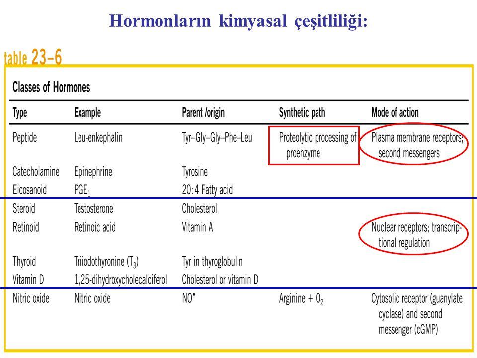 Hormonların kimyasal çeşitliliği:
