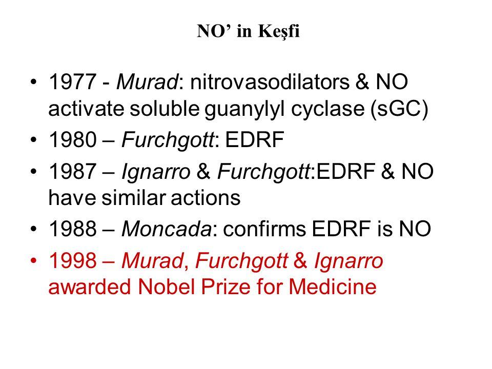 NO' in Keşfi •1977 - Murad: nitrovasodilators & NO activate soluble guanylyl cyclase (sGC) •1980 – Furchgott: EDRF •1987 – Ignarro & Furchgott:EDRF &