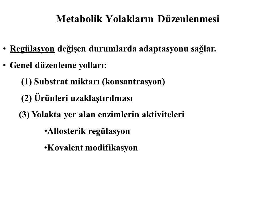 Metabolik Yolakların Düzenlenmesi •Regülasyon değişen durumlarda adaptasyonu sağlar. •Genel düzenleme yolları: (1) Substrat miktarı (konsantrasyon) (2
