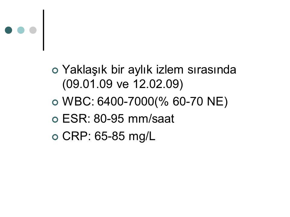 Yaklaşık bir aylık izlem sırasında (09.01.09 ve 12.02.09) WBC: 6400-7000(% 60-70 NE) ESR: 80-95 mm/saat CRP: 65-85 mg/L