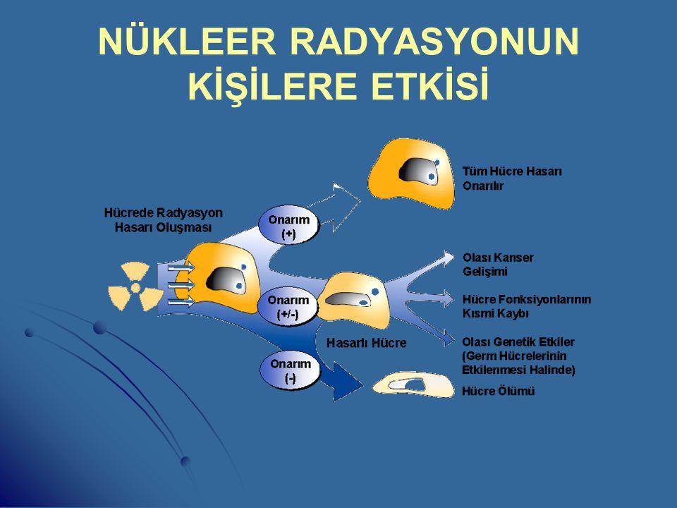 NÜKLEER RADYASYONUN KİŞİLERE ETKİSİ - - Nükleer radyasyon vücuttaki hücrelerin yapısını bozarak iyonize eder. - Kontrolsüz hücre çoğalması meydana get