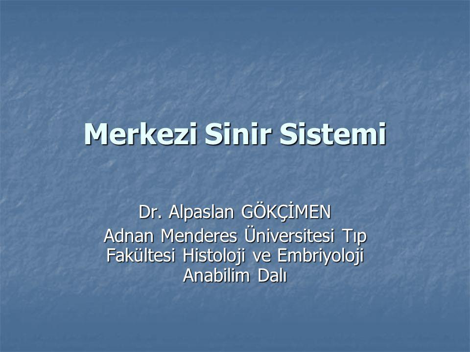 Merkezi Sinir Sistemi Dr. Alpaslan GÖKÇİMEN Adnan Menderes Üniversitesi Tıp Fakültesi Histoloji ve Embriyoloji Anabilim Dalı