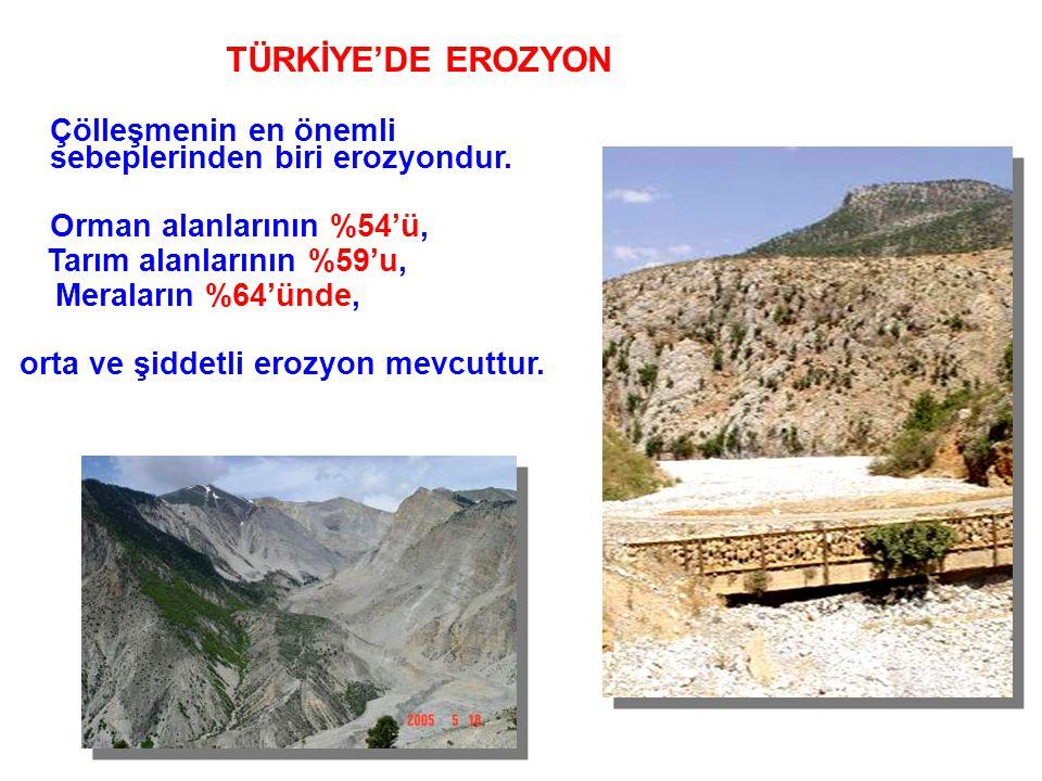 Çölleşmenin en önemli sebeplerinden biri erozyondur. Orman alanlarının %54'ü, Tarım alanlarının %59'u, Meraların %64'ünde, orta ve şiddetli erozyon me