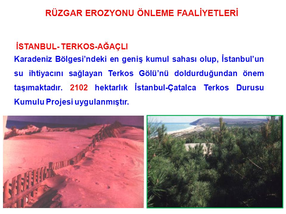 110 İSTANBUL- TERKOS-AĞAÇLI Karadeniz Bölgesi'ndeki en geniş kumul sahası olup, İstanbul'un su ihtiyacını sağlayan Terkos Gölü'nü doldurduğundan önem taşımaktadır.