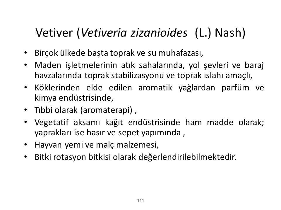 111 Vetiver (Vetiveria zizanioides (L.) Nash) • Birçok ülkede başta toprak ve su muhafazası, • Maden işletmelerinin atık sahalarında, yol şevleri ve b