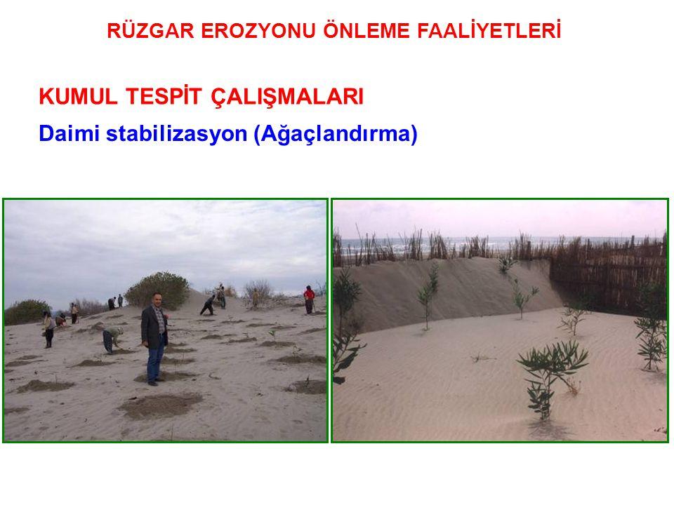 Daimi stabilizasyon (Ağaçlandırma) KUMUL TESPİT ÇALIŞMALARI RÜZGAR EROZYONU ÖNLEME FAALİYETLERİ