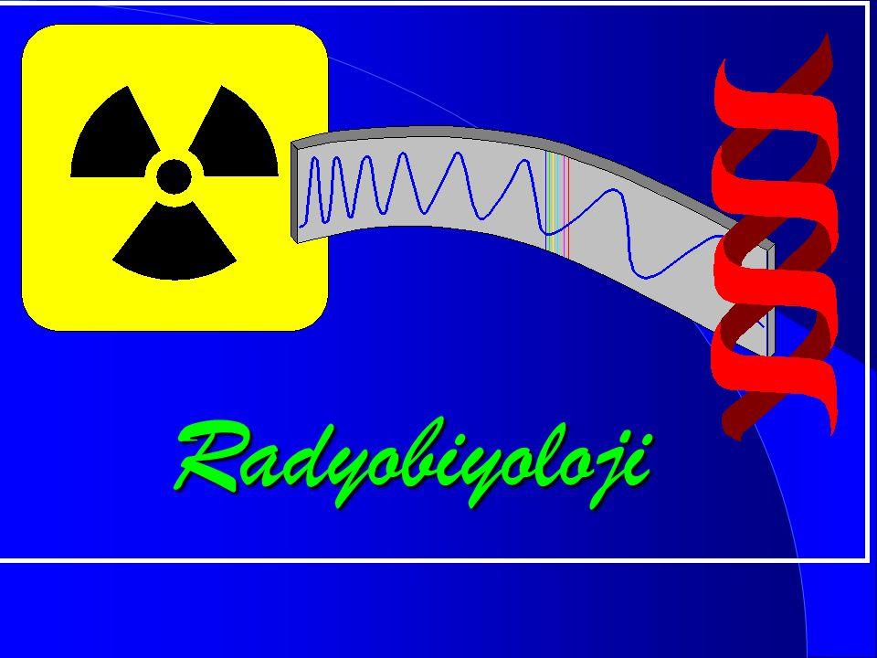 Radyobiyoloji
