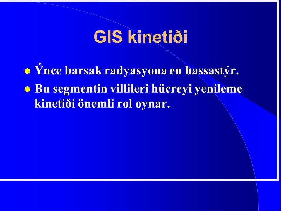 GIS kinetiði l Ýnce barsak radyasyona en hassastýr. l Bu segmentin villileri hücreyi yenileme kinetiði önemli rol oynar.