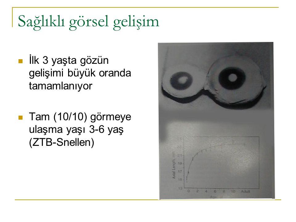 Sağlıklı görsel gelişim  İlk 3 yaşta gözün gelişimi büyük oranda tamamlanıyor  Tam (10/10) görmeye ulaşma yaşı 3-6 yaş (ZTB-Snellen)