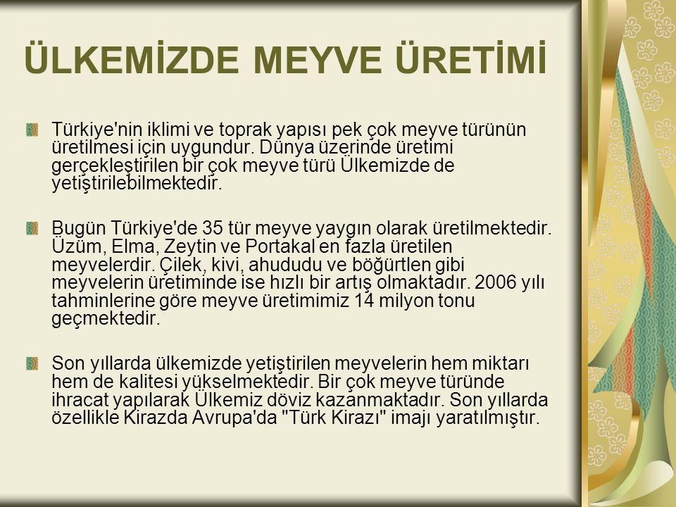 ÜLKEMİZDE MEYVE ÜRETİMİ Türkiye'nin iklimi ve toprak yapısı pek çok meyve türünün üretilmesi için uygundur. Dünya üzerinde üretimi gerçekleştirilen bi