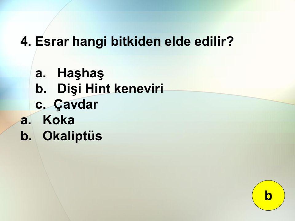4. Esrar hangi bitkiden elde edilir? a. Haşhaş b. Dişi Hint keneviri c. Çavdar a. Koka b. Okaliptüs b