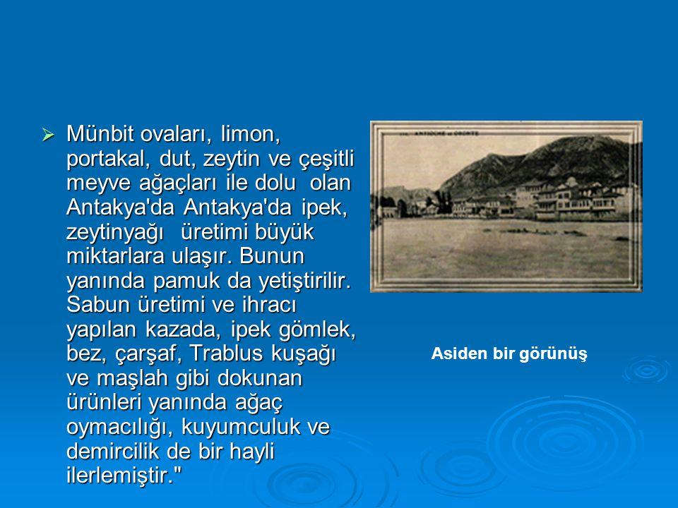  Münbit ovaları, limon, portakal, dut, zeytin ve çeşitli meyve ağaçları ile dolu olan Antakya'da Antakya'da ipek, zeytinyağı üretimi büyük miktarlara