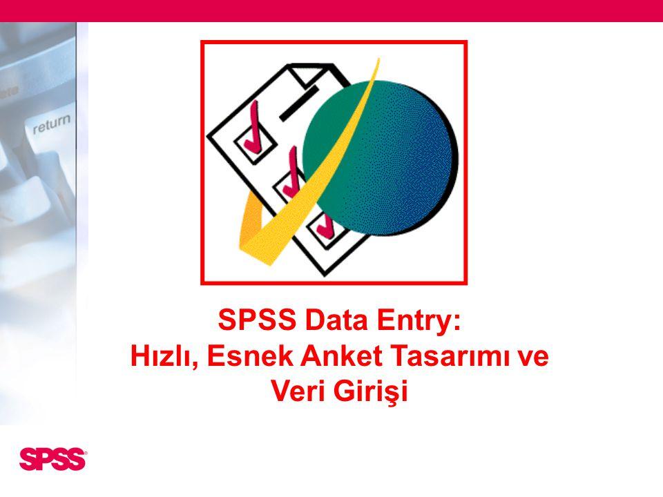 SPSS Data Entry: Hızlı, Esnek Anket Tasarımı ve Veri Girişi