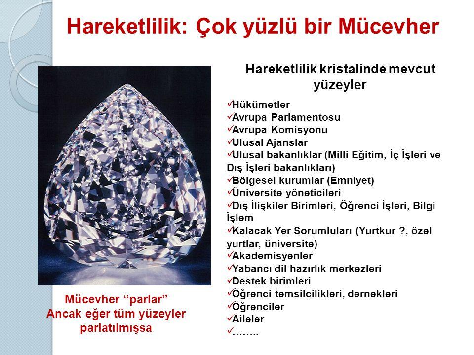 Mücevher parlar Ancak eğer tüm yüzeyler parlatılmışsa Hareketlilik: Çok yüzlü bir Mücevher Hareketlilik kristalinde mevcut yüzeyler  Hükümetler  Avrupa Parlamentosu  Avrupa Komisyonu  Ulusal Ajanslar  Ulusal bakanlıklar (Milli Eğitim, İç İşleri ve Dış İşleri bakanlıkları)  Bölgesel kurumlar (Emniyet)  Üniversite yöneticileri  Dış İlişkiler Birimleri, Öğrenci İşleri, Bilgi İşlem  Kalacak Yer Sorumluları (Yurtkur ?, özel yurtlar, üniversite)  Akademisyenler  Yabancı dil hazırlık merkezleri  Destek birimleri  Öğrenci temsilcilikleri, dernekleri  Öğrenciler  Aileler  ……..