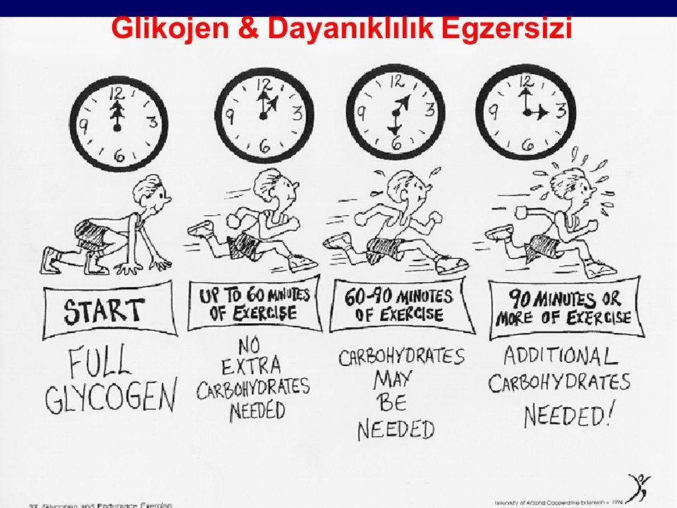 Glikojen & Dayanıklılık Egzersizi