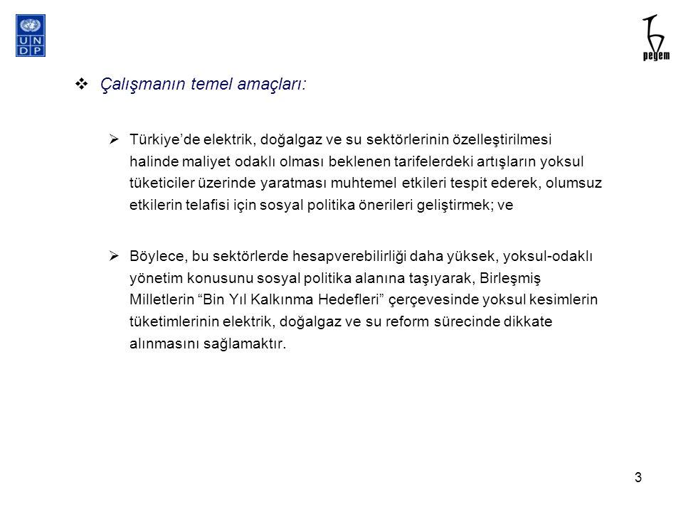 Kaçak kullanım, hizmetlere ulaşım ve tüketim davranışlarının nitel analizi (Sibel Kalaycıo ğ lu) 24