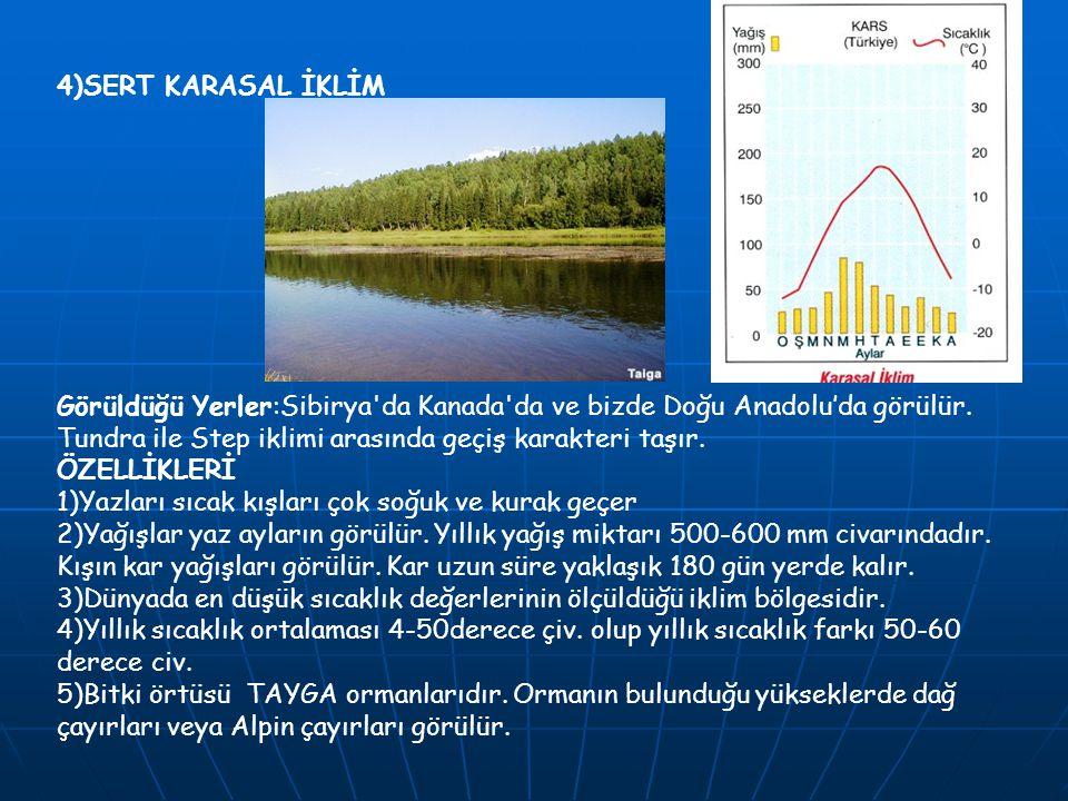 4)SERT KARASAL İKLİM Görüldüğü Yerler:Sibirya'da Kanada'da ve bizde Doğu Anadolu'da görülür. Tundra ile Step iklimi arasında geçiş karakteri taşır. ÖZ