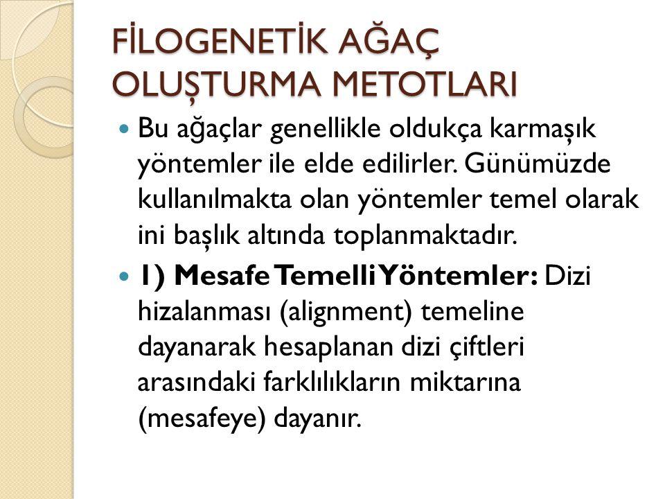 F İ LOGENET İ K A Ğ AÇ OLUŞTURMA METOTLARI 2) Karakter Temelli Yöntemler: Farklı karakterlere dayanmaktadır ki bu karakterler her bir taksondaki canlıya ait olan moleküler dizilerdir.
