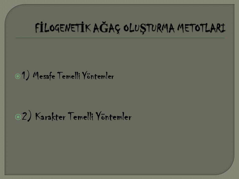  a) Kümelenme Temelli Yöntem • UPGMA(Unweighted Pair Group Method Algorithm) • Neighbor-Joining (NJ)  b) En iyi durum(optimum) Temelli Yöntem