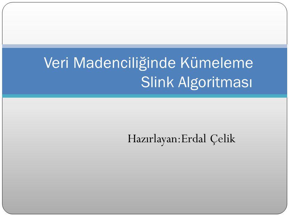 Hazırlayan:Erdal Çelik Veri Madenciliğinde Kümeleme Slink Algoritması
