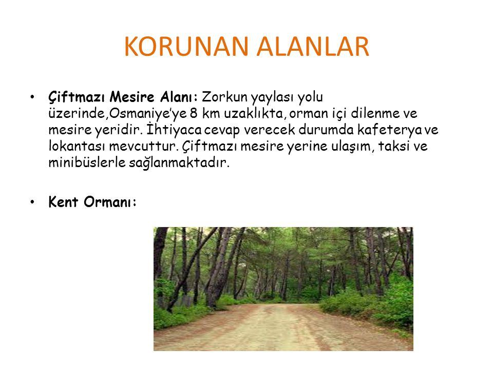 KORUNAN ALANLAR • Çiftmazı Mesire Alanı: Zorkun yaylası yolu üzerinde,Osmaniye'ye 8 km uzaklıkta, orman içi dilenme ve mesire yeridir. İhtiyaca cevap